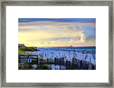 A Taste Of Heaven Framed Print by David Morefield