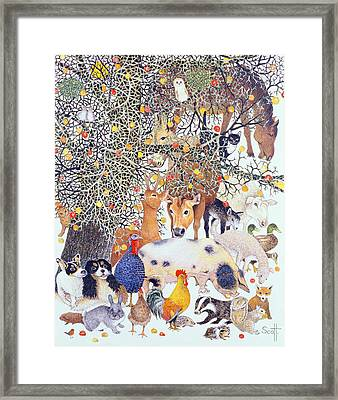 A Tasty Treat Framed Print by Pat Scott