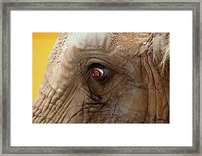 A Tear Escapes Framed Print by ShadowWalker RavenEyes Dibler