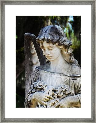 A Tender Sadness Framed Print