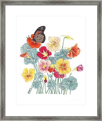 Framed Print featuring the painting A Tethered Butterfly by Stanza Widen