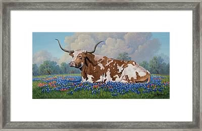 A Texas Welcome Framed Print
