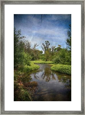 A Thousand Kisses To Follow Framed Print