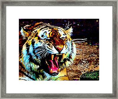 A Tiger's Roar Framed Print by Zedi