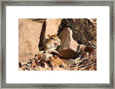 A Tight Fit Framed Print