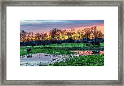 A Time For Reflection Framed Print by Jeffrey Friedkin