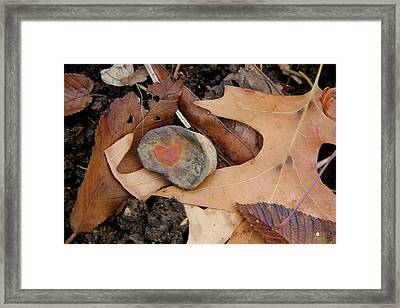A Token Heart Framed Print by Shannon Guest