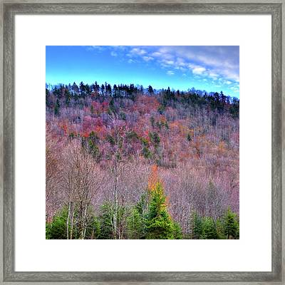 Framed Print featuring the photograph A Touch Of Autumn by David Patterson