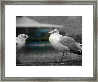 A Touch Of Blue Framed Print by Susanne Van Hulst