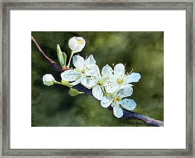 A Touch Of Innocence Framed Print by Bobbi Price