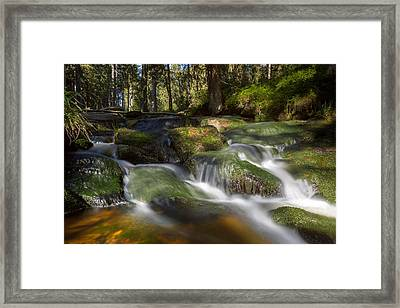 A Touch Of Light Framed Print by Andreas Levi