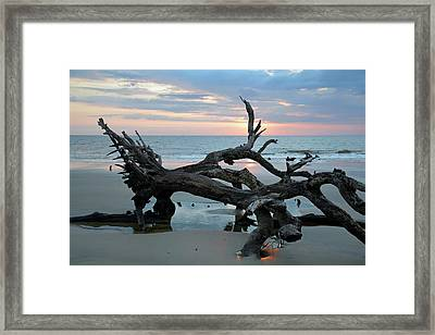 A Touch Of Morning Glory Framed Print by Bruce Gourley