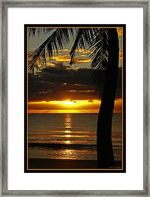 A Touch Of Paradise Framed Print