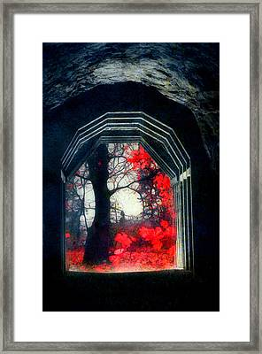 A Touch Of Red Framed Print by Tara Turner