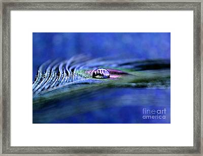 A Touch Of Royalty Framed Print by Krissy Katsimbras