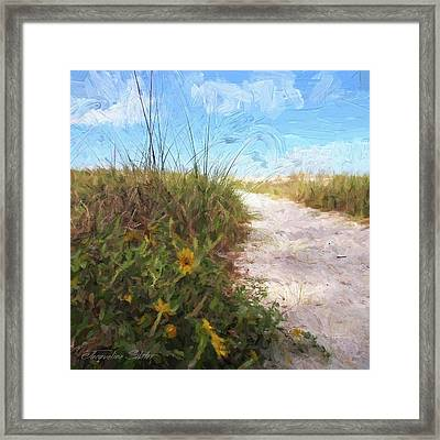 A Trail To The Beach Framed Print