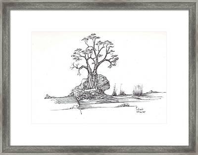 A Tree A Rock And Some Grass Framed Print by Padamvir Singh
