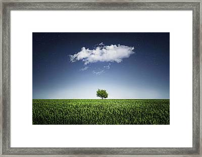 A Tree Covered With Cloud Framed Print by Bess Hamiti