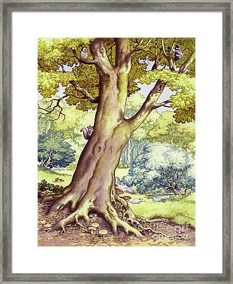 A Tree Full Of Wildlife Framed Print by Pat Nicolle