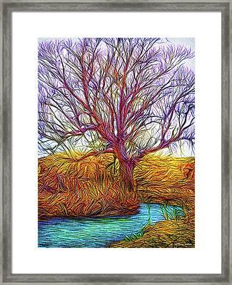 A Tree Greets Springtime Framed Print