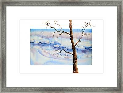 A Tree In Another Dimension Framed Print