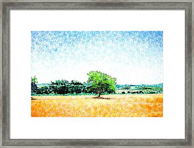 A Tree Near Siena Framed Print