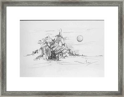 A Tree Rocks And The Sun Framed Print by Padamvir Singh