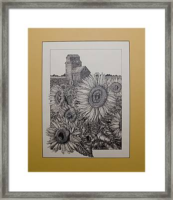 A Tribute To The Sun Framed Print
