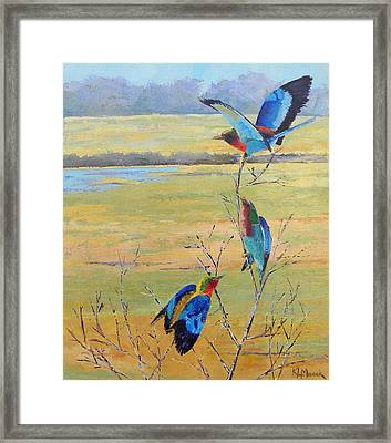 A Trio Of Rollers Framed Print