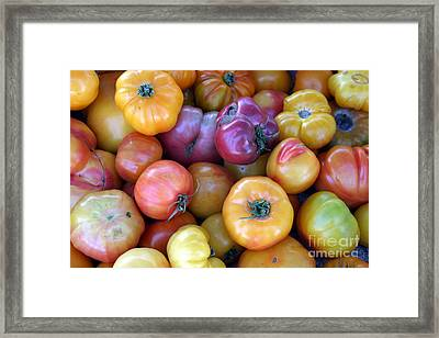 A Trip Through The Farmers Market Featuring Heirloom Tomatoes. Framed Print by Michael Ledray