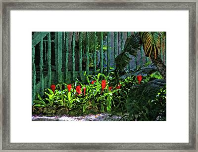 A Tropical Florida Landscape Framed Print by HH Photography of Florida
