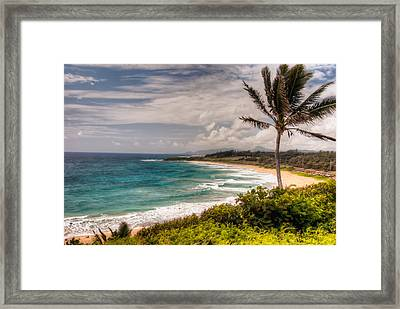 A Tropical Paradise Framed Print