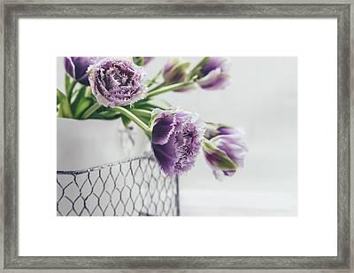 A Tulip Moment Framed Print