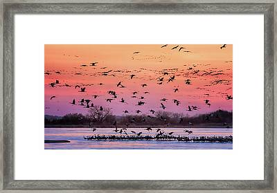 A Vibrant Evening Framed Print