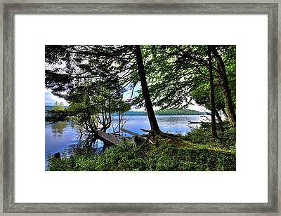 Framed Print featuring the photograph A View From Covewood by David Patterson