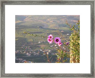A View From Mt. Arbel Framed Print by Susan Heller