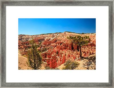 A View From Upper Inspiration Point Framed Print by Robert Bales