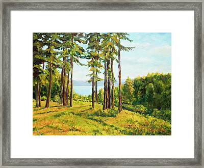 A View To The Lake Framed Print