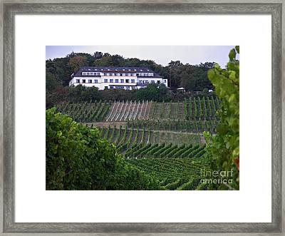 A Vineyard Above Rudesheim 2 Framed Print by Sarah Loft