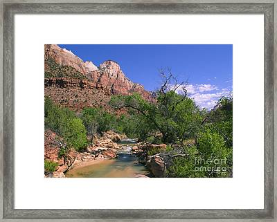 Framed Print featuring the photograph A Virgin In Zion by Suzette Kallen