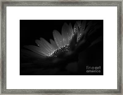 A Vision Of Beauty Framed Print by Sharon Mau