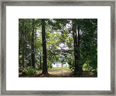 A Walk By The Lake Framed Print