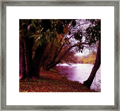 A Walk By The River Framed Print