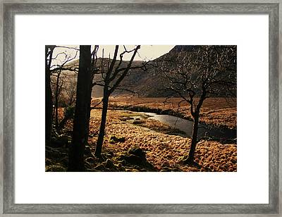 A Walk In Donegal Framed Print by Martina Fagan
