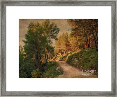 A Walk In Provence. Framed Print by Robert Brown