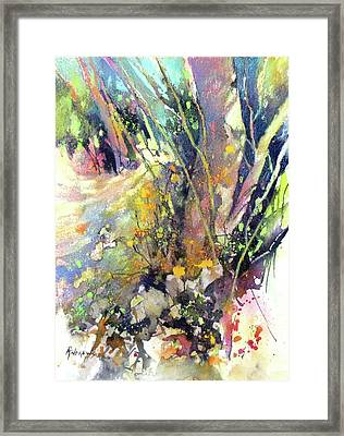 A Walk In The Forest Framed Print by Rae Andrews