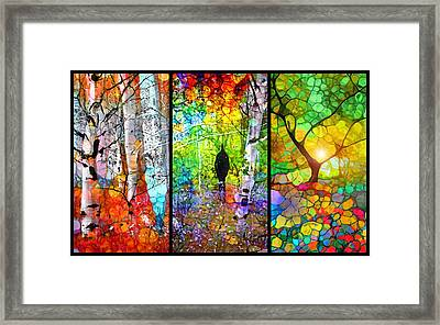 A Walk In The Forest Framed Print