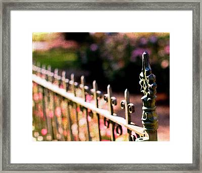 A Walk In The Garden Framed Print
