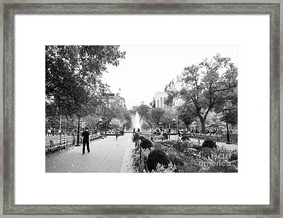 Framed Print featuring the photograph A Walk In The Park by Ana V Ramirez