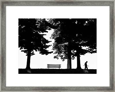 A Walk In The Park Framed Print by Artecco Fine Art Photography